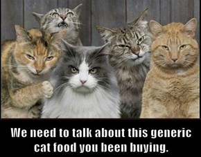 We need to talk about this generic cat food you been buying.