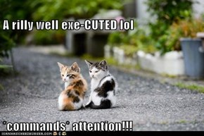 A rilly well exe-CUTED lol  *commands* attention!!!