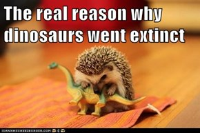 The real reason why dinosaurs went extinct