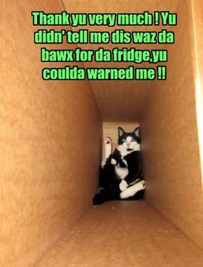Thank yu very much ! Yu didn' tell me dis waz da bawx for da fridge,yu coulda warned me !!