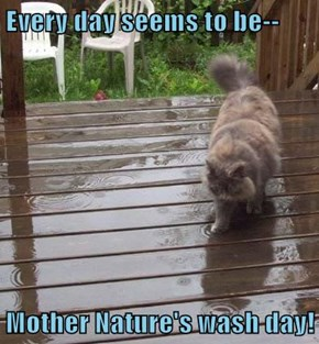 Every day seems to be--  Mother Nature's wash day!