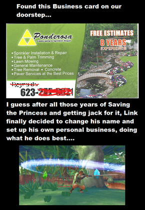 Saving Zelda, Learning Life Skills
