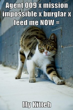 Agent 009 x mission impossible x burglar x feed me NOW =   My Kitteh