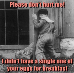 Please don't hurt me!  I didn't have a single one of your eggs for breakfast