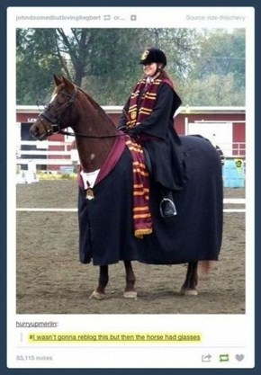 This Horse is a Gryffindor Now