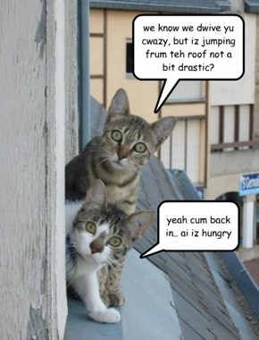 we know we dwive yu cwazy, but iz jumping frum teh roof not a bit drastic?