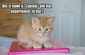 "Dis iz nawt a ""Laptop"" aih haz experiense  in dat !"