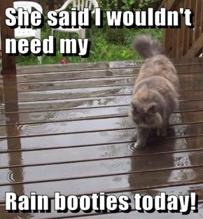She said I wouldn't need my  Rain booties today!