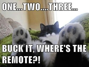 ONE...TWO....THREE...  BUCK IT, WHERE'S THE REMOTE?!