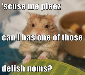 'scuse me pleez can I has one of those  delish noms?