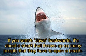 "If you watch ""Jaws"" backwards, it's about a shark that throws up so many people that they have to open a beach."