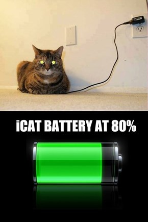Cat is not yet fully charged