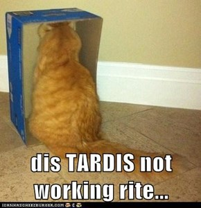 dis TARDIS not working rite...