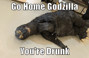 Go Home Godzilla  You're Drunk