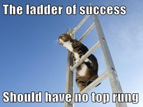 The ladder of success  Should have no top rung