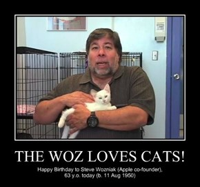 THE WOZ LOVES CATS!