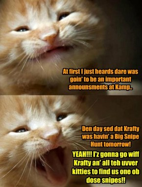 A surprise announcement is made at Kamp Kuppykakes! All teh kittie kampers are delighted!