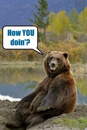 friendly bear needs a new pick up line