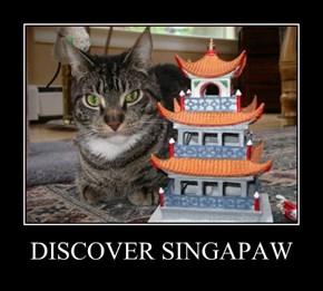DISCOVER SINGAPAW