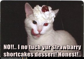 NO!!.. I no tuch yur strawbarry shortcakes dessert! Honest!..