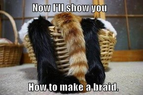 Now I'll show you               How to make a braid.