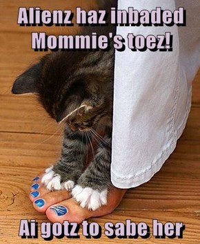 Alienz haz inbaded Mommie's toez!  Ai gotz to sabe her