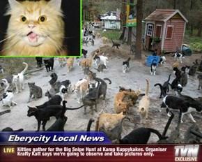 Eberycity Local News - Kitties gather for the Big Snipe Hunt at Kamp Kuppykakes. Organiser Krafty Katt says we're going to observe and take pictures only.