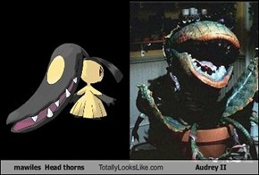 mawiles  Head thorns Totally Looks Like Audrey II