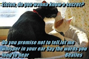 Listen, do you wanna know a secret?    Do you promise not to tell,let me whisper in your ear Say the words you long to hear                                   Beatles