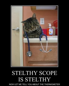 STELTHY SCOPE IS STELTHY