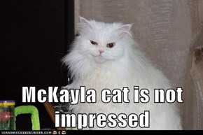 McKayla cat is not impressed