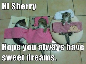 HI Sherry  Hope you always have sweet dreams.