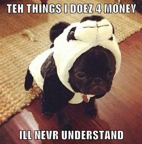 TEH THINGS I DOEZ 4 MONEY  ILL NEVR UNDERSTAND