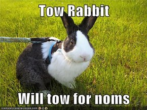 Tow Rabbit  Will tow for noms