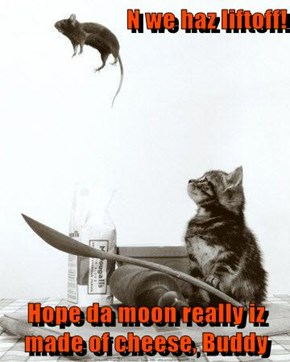 N we haz liftoff!  Hope da moon really iz made of cheese, Buddy