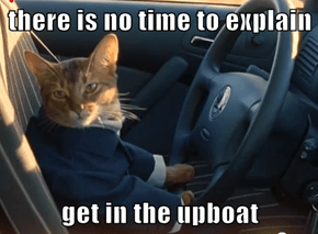 there is no time to explain  get in the upboat