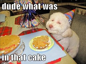 dude what was  in that cake