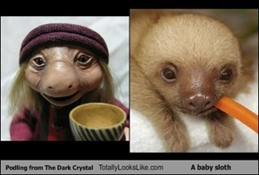 Podling from The Dark Crystal Totally Looks Like A baby sloth