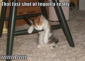 That last shot of tequilla really  zzzzzzzZzzzzz