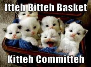 Itteh Bitteh Basket  Kitteh Committeh