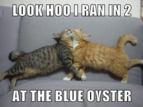 LOOK HOO I RAN IN 2  AT THE BLUE OYSTER
