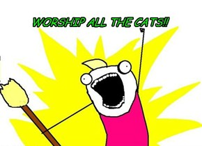Worship all cats!