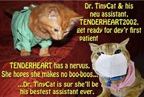 Congratz TENDERHEART!