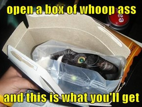 open a box of whoop ass  and this is what you'll get