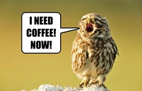 I NEED COFFEE! NOW!