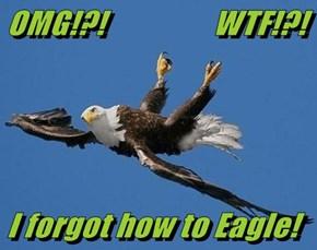 OMG!?!                 WTF!?!  I forgot how to Eagle!