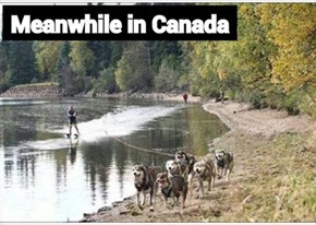 Mean while back in Canada!