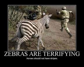 RUN!!!! IT'S A ZEBRA!!!