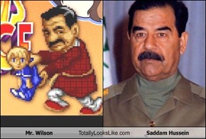 Mr. Wilson Totally Looks Like Saddam Hussein