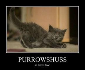 PURROWSHUSS